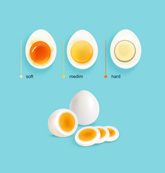 boiled eggs stages set vector image
