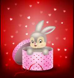 cartoon bunny in a gift box vector image