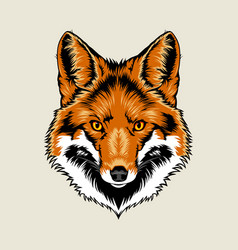 Red Fox Head vector image