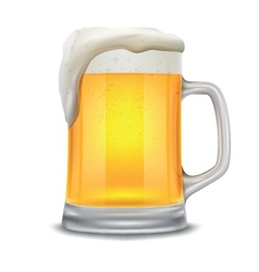 beer glass mug vector image