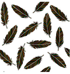 birds feathers seamless feathers with colored vector image