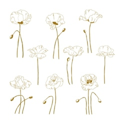 Set of one-colored outlined poppy vector image