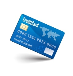 Realistic Credit Card vector image vector image