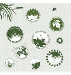 Set of botany badges vector image