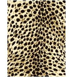 cheetah leopard animal skin texture vector image vector image