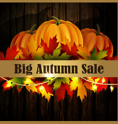autumn special sale poster on wood background vector image