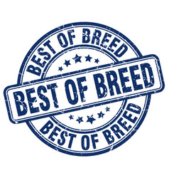 Best of breed blue grunge stamp vector