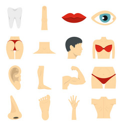 Body parts set flat icons vector
