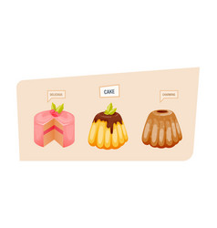 Colorful sweet charming cakes slices with glaze vector