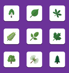 Flat icon natural set of timber leaves rosemary vector