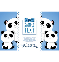 happy fathers day card with panda bears vector image