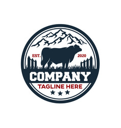 modern badge angus bull and farm logo vector image
