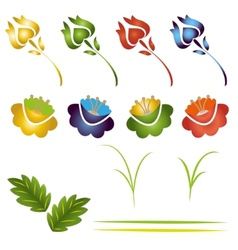 set of flowers and leaves vector image