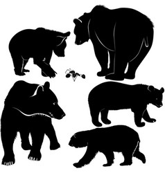 set silhouettes bears bears collecti vector image