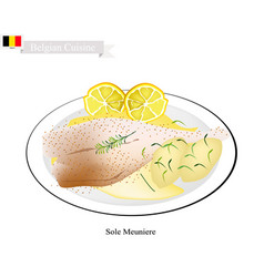 Sole meuniere a popular dish in belgium vector