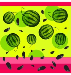 Watermelon and seeds from watermelon vector image