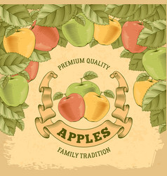 Apples label vector