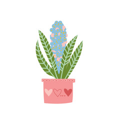 blooming house plant growing in pink pot design vector image