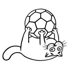fat cat is caught a soccer ball isolated vector image