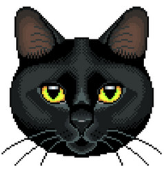 pixel black cat face isolated vector image