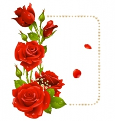 Rose frame vector
