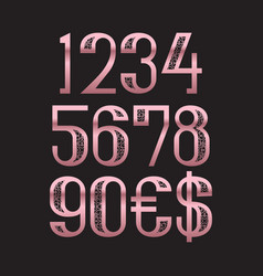 Rose gold patterned numbers with dollar and euro vector