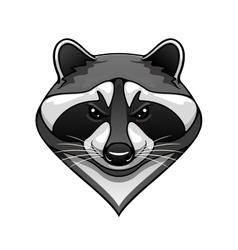 Cartoon wild raccoon animal mascot vector image vector image