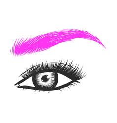 Beautiful hand drawing eyebrows for the logo of vector