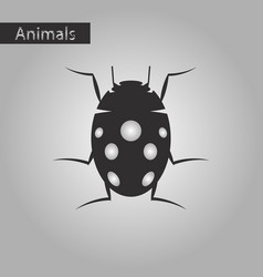 Black and white style icon of ladybug vector