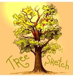 hand drawn sketch tree vector image