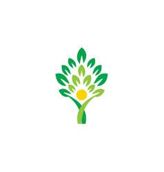 people tree logo icon symbol wellness concept logo vector image