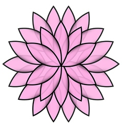 Pink flower lotus on white background isolated vector