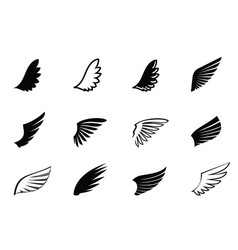 Set black wings and outline vector