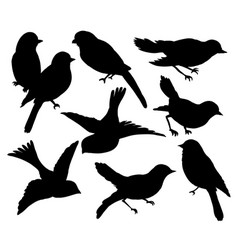 set silhouettes birds wall sticker vector image