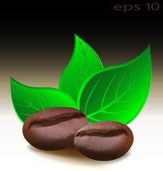 Coffee beans logo vector