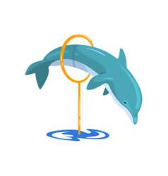 dolphin jumping through a ring sea animal vector image
