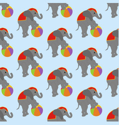 Elephant in circus pattern vector