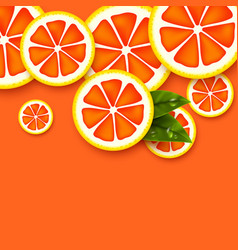 grapefruit background sliced grapefruits pieces vector image