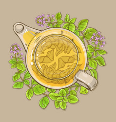 Oregano tea in teapot vector