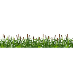reeds in grass seamless pattern on white vector image
