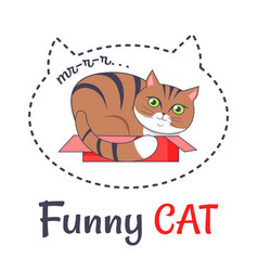 funny brown cat sleep in open red box makes sound vector image vector image