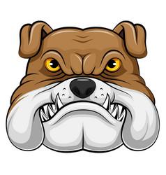 bulldog head mascot vector image