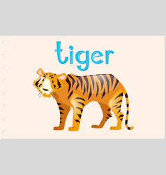 Flashcard tiger with word vector