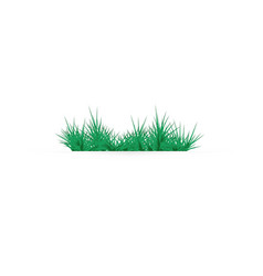 green grass on a white background glade in the vector image