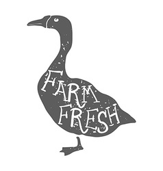 Hand Drawn Farm Animal Goose Farm Fresh Lettering vector