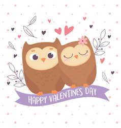 happy valentines day cute couple owls heart love vector image