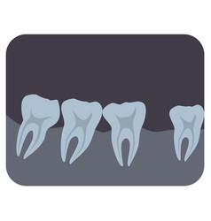 intraoral radiograph human teeth and gingiva vector image