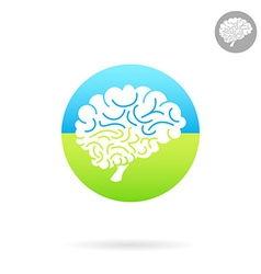 Medical icon of brain vector image