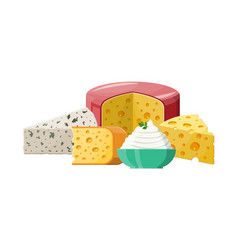 set of milk cheese products vector image