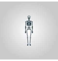 Skeletons - human bones vector